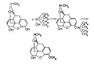 Метилирование морфина в кодеин протекает по следующей схеме