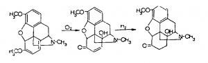 Текодин получают окислением тебаина до оксикодиенона и дальнейшего гидрирования его в дигидрооксикодеинон по следующей схеме