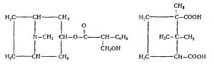 Гиосциамин камфорнокислый