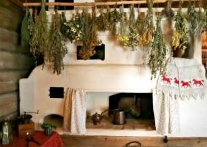 Хранение лекарственных растений